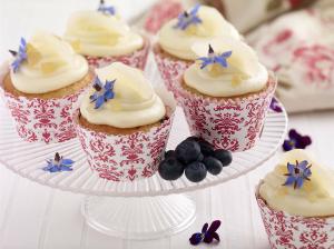 fla cup cakes tw jan 16