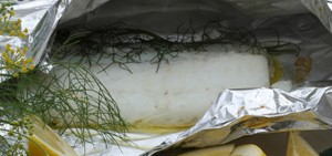 dariana_allens_fish_papillote_with_hollandaise_sauce