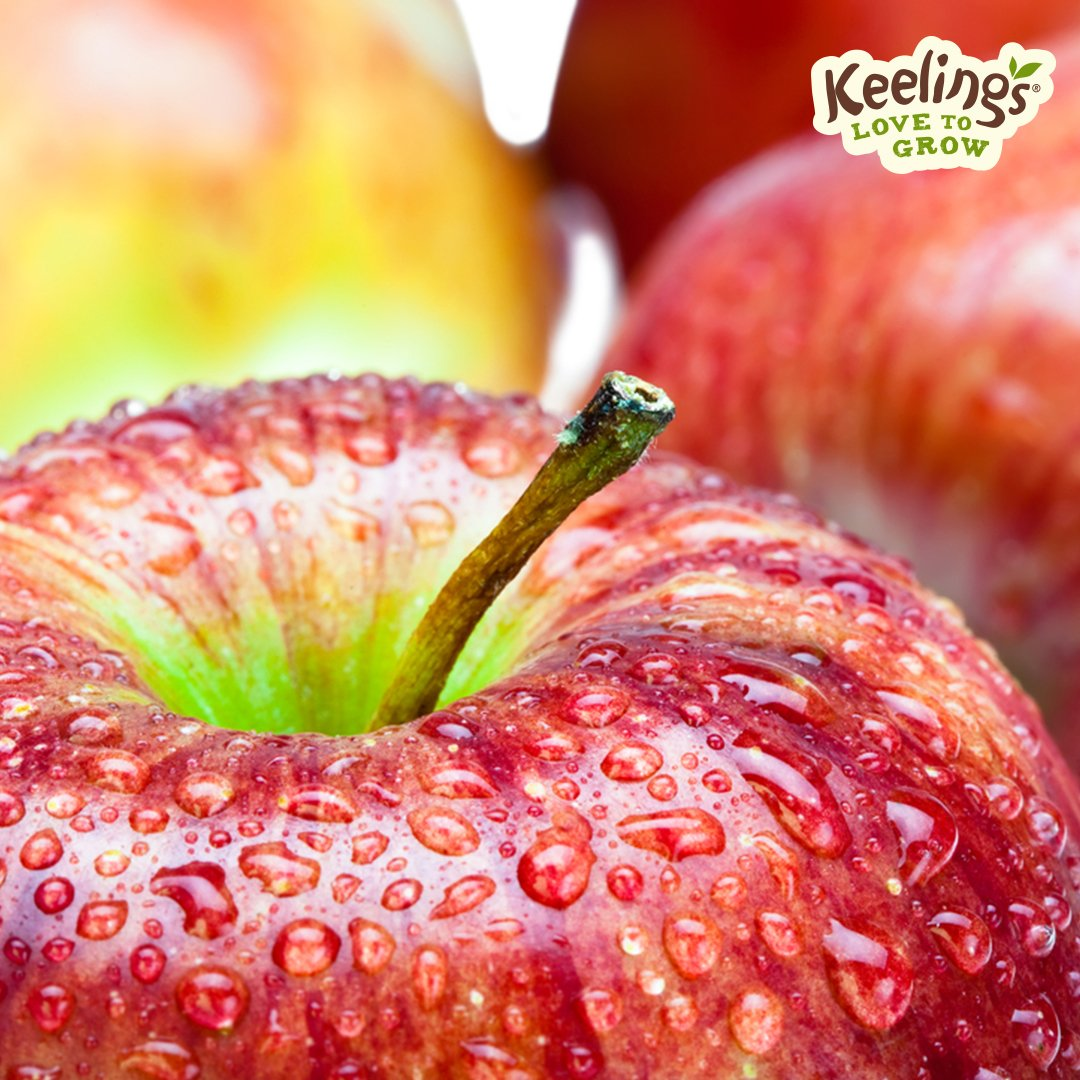 keelings apple antioxidant