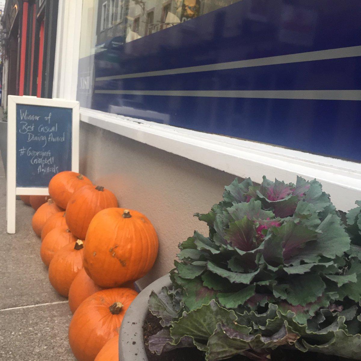 nash pumpkins