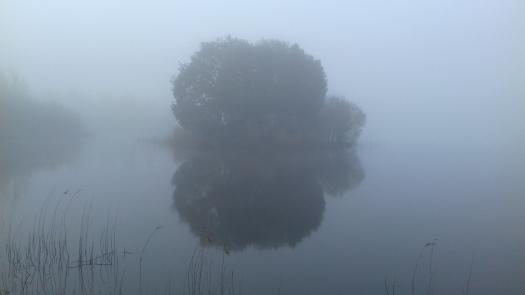 sunday mist lough rynn