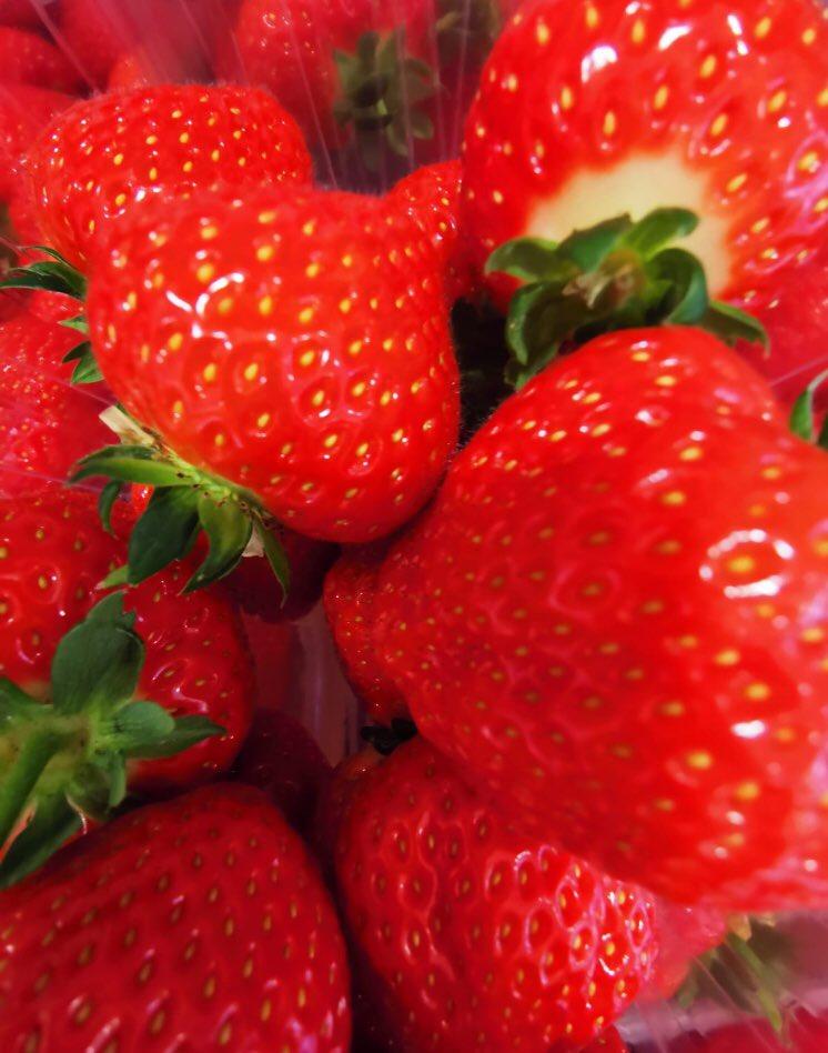 nash roscarbery strawberries