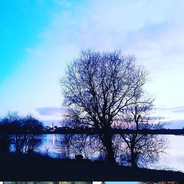 Screenshot_2020-04-24 This is Cavan ( thisiscavanofficial) • Instagram photos and videos