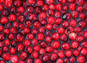 cranberries tw Jan 16
