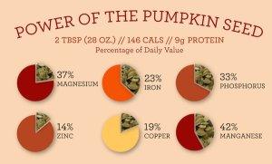 pumpkin seed tw jan 16