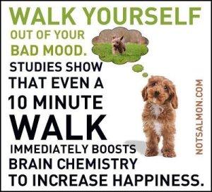 walk yourself tw mar 16